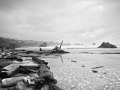 Coquille Point OR BW_MG_9082