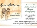 New-Business-Card-2012