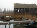 Absecon Duck Shack IMG_0663_2